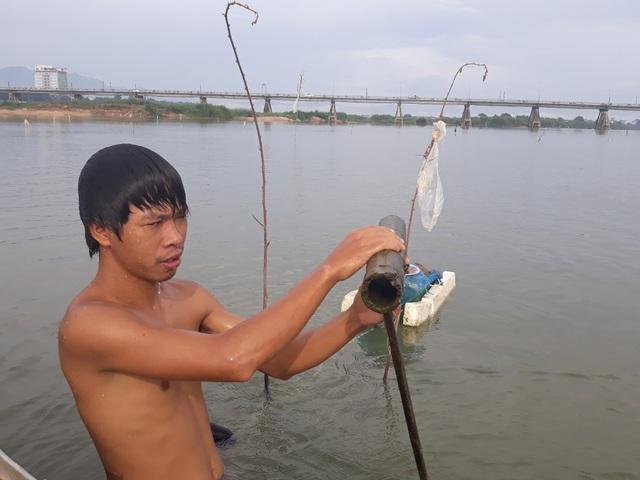 Ống tre bẫy cá bống được đục thủng 2 đầu rồi cắm xuống sông, nơi cắm ống được đánh dấu bằng nhánh cây