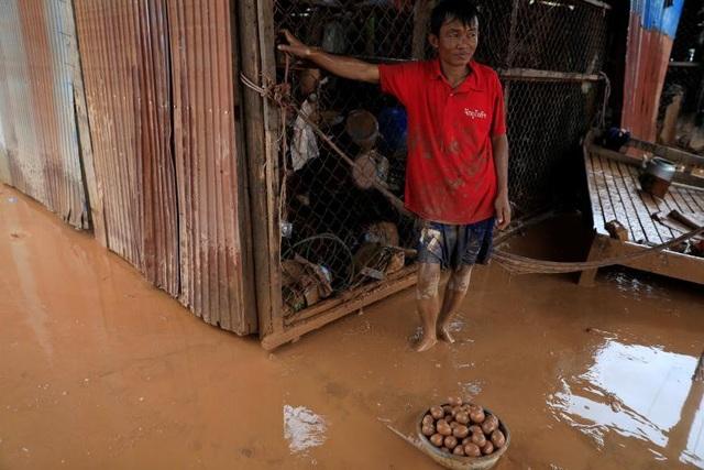 Người đàn ông đứng cạnh những quả trứng được vớt từ trong bùn.