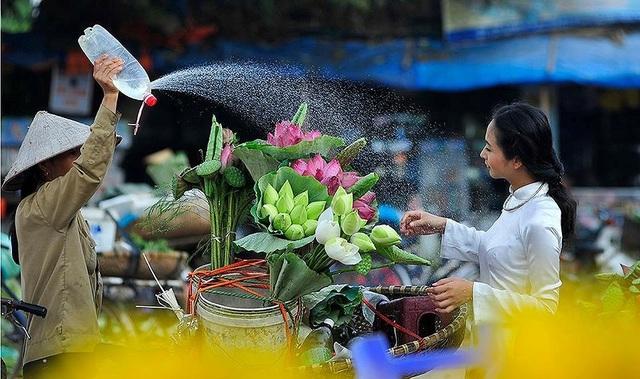 Nếu như ở các đô thị lớn, các đầm sen đã ngày một thưa thớt và những người yêu loài hoa này thường chỉ biết tìm đến các gánh hàng rong để sở hữu một bó sen