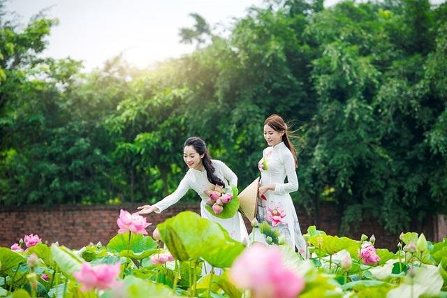 Các thiếu nữ khoe sắc bên đầm sen ở làng quê Việt