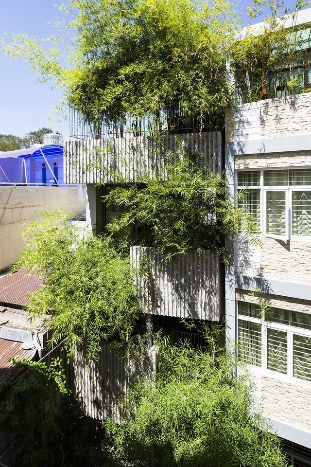 Bamboo house đã được thiết kế để tạo ra một không gian sống thoải mái mặc dù có diện tích hạn chế. Khu đất nhỏ và hẹp, chỉ có thế lấy sáng và thông thoáng tự nhiên qua 2 mặt tiền phía trước và sau. Các bồn cây được bố trí ngẫu nhiên trên mặt tiền phía trước, tạo ra sự hấp dẫn và một lối vào chào đón hơn.
