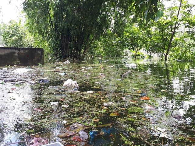 Hình ảnh rác đóng bè, dày đặc trên mặt nước tại nhiều thôn của xã Nam Phương Tiến