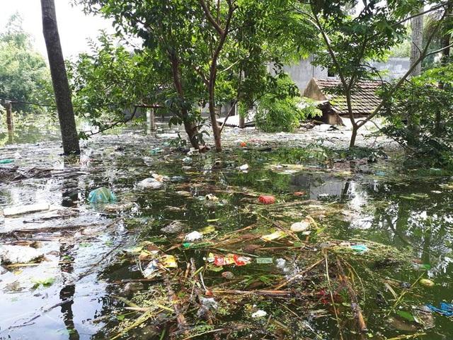 Nước ngập cao kèm theo rác thải bủa vây đã khiến cho cuộc sống của người dân xã Nam Phương Tiến gặp nhiều khó khăn.