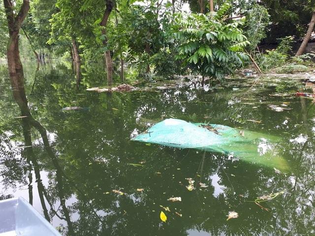 Theo người dân, mới đây nhiều tấn rác đã được người dân trục vớt, chuyển đi. Tuy nhiên đến nay tình trạng rác thải vẫn chưa được cải thiện, lượng rác tồn đọng vẫn còn rất lớn