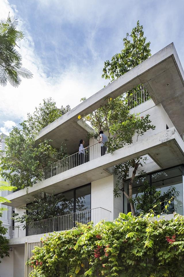 Ngôi nhà nằm trong một khu đô thị quy hoạch gọn gàng, nơi mà người dân xây dựng hết chiều cao cho phép và tối đa không gian sống bằng cách giảm không gian xanh.Với ý tưởng mang cây xanh vào nhà, nhà thiết kế muốn mỗi ngôi nhà sẽ đảm nhiệm vị trí như một công viên nhỏ trong một khu phố dày đặc.