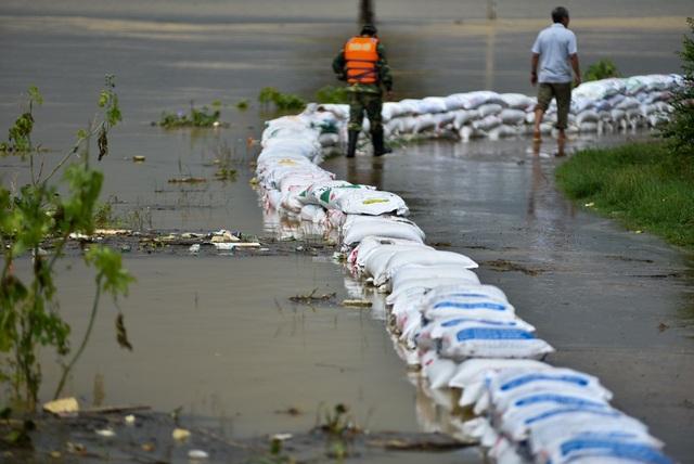 Mực nước sông Nứa hiện đã áp sát mặt đê.