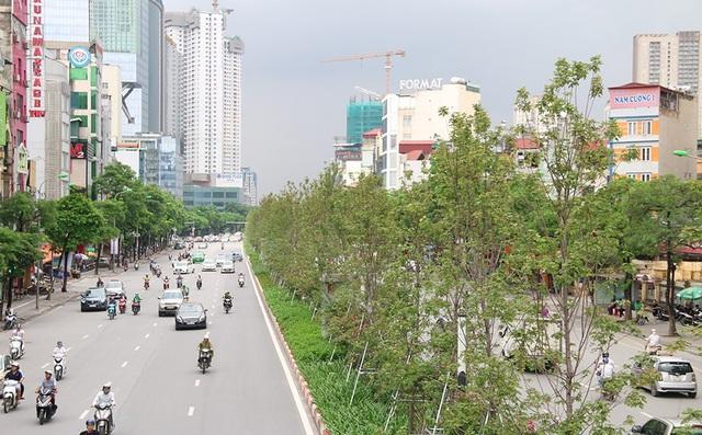 Ở thời điểm Hà Nội bắt đầu trồng phong lá đỏ, một số người chưa tin rằng loài cây này phù hợp với khí hậu nhiệt đới của Việt Nam. Trao đổi cùng phóng viên cách đây ít phút, một số chuyên gia vẫn cho rằng còn quá sớm để khẳng định loại cây này đã hoàn toàn thích ứng với khí hậu và điều kiện môi trường tại Hà Nội.