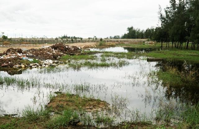 Bãi đất trống ở cuối khu du lịch Hải Tiến rộng hàng nghìn m2 là nơi xả nước thải và rác sinh hoạt. Nơi đây nằm sát thôn Quang Trung, Trung Hải (xã Hoằng Thanh), nước thải không thoát kịp ứ đọng lại, bốc mùi hôi thối khủng khiếp.