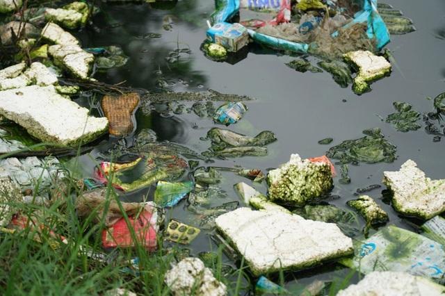 Cống thoát nước ngập ngụa rác thải, nước ô nhiễm đặc quánh.