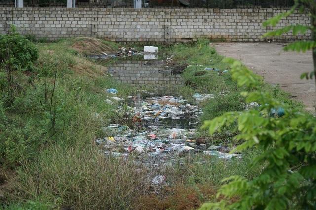 Khu du lịch biển Hải Tiến bắt đầu đi vào hoạt động từ năm 2012. Đến năm 2017, lượng du khách đến đây tăng đột biến, với hệ thống xử lý nước thải không đạt tiêu chuẩn đã dẫn tới tình trạng nước thải ngập ngụa cả một khu đất, gây ảnh hưởng nghiêm trọng tới cuộc sống người dân vùng lân cận.