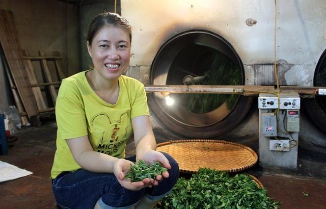 Búp trà đinh khá nhỏ nên trong quá trình chế biến chị Minh rất cẩn trọng