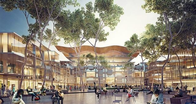 Vi vu du học Úc và rinh học bổng 700 triệu từ đại học Macquarie, Sydney - 2
