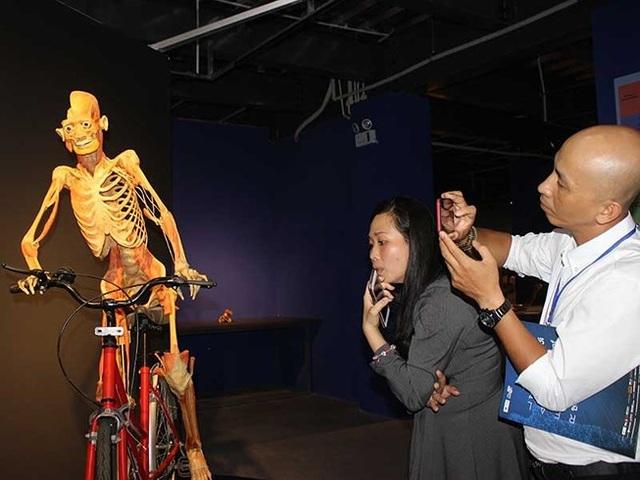 Một trong những xác người được trưng bày tại triển lãm Sự bí ẩn đặc biệt của cơ thể người. Ảnh: PLO.