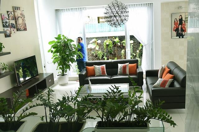 Phòng khách bố trí dàn cây Phát Tàikhông cao lắm nhằm cho không gian được thoáng.