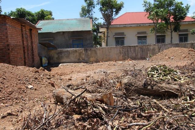 Nơi được cho là cây cà te mọc trước khi được khai thác