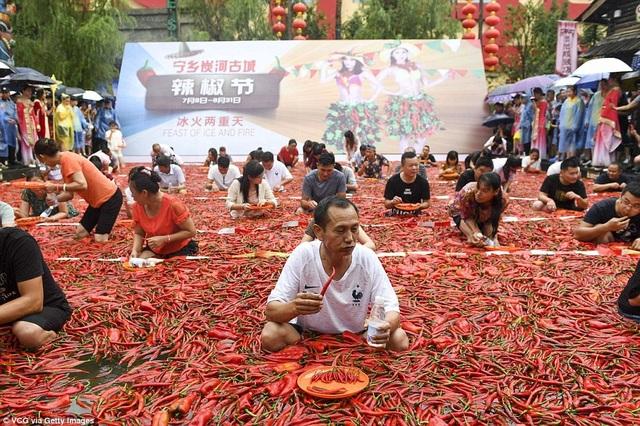 Giành giải quán quân năm nay là một người đàn ông ăn 50 quả ớt trong vòng 1 phút, phá vỡ kỷ lục năm ngoái