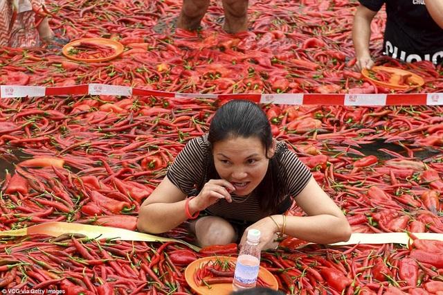 Chinh phục những trái ớt cay xé lưỡi là điều không đơn giản, nhất là nhiệt độ ngoài trời ở ngưỡng 40 độ C