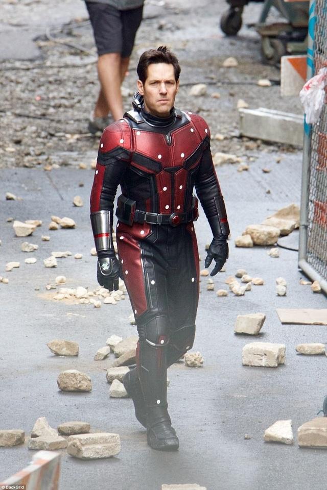 Nam diễn viên Paul Rudd (48 tuổi) trong bộ đồ Người Kiến.
