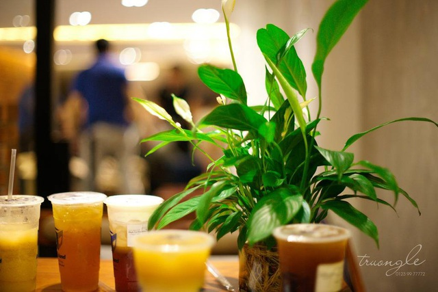 Cubicland Coffee & Tea ra mắt sản phẩm Lục trà tua-tua - 3
