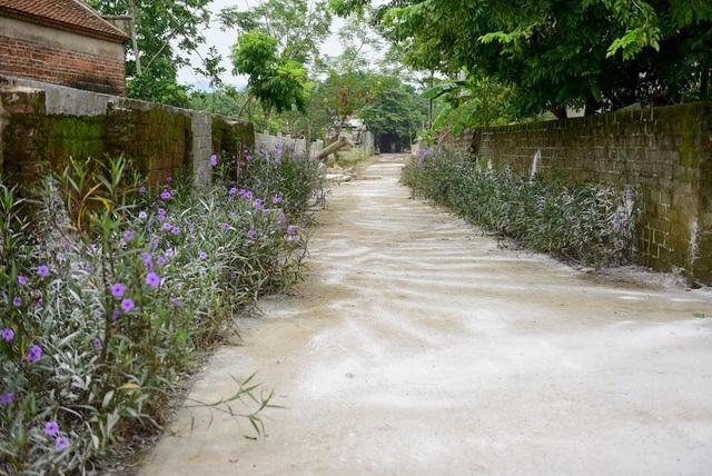 Đường làng phủ đầy vôi bột.
