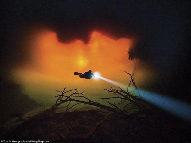Thổi bay tâm trí với những bức ảnh chiến thắng trong cuộc thi ảnh dưới nước - 1