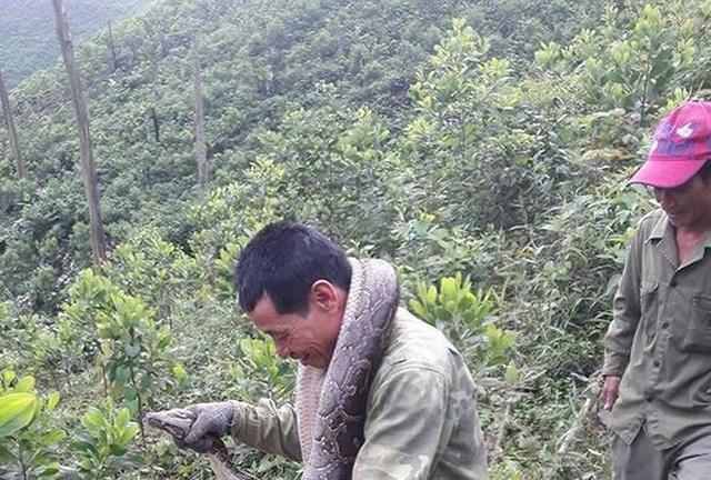 Nhóm người dân Hương Lâm đưa con trăn về nhà.