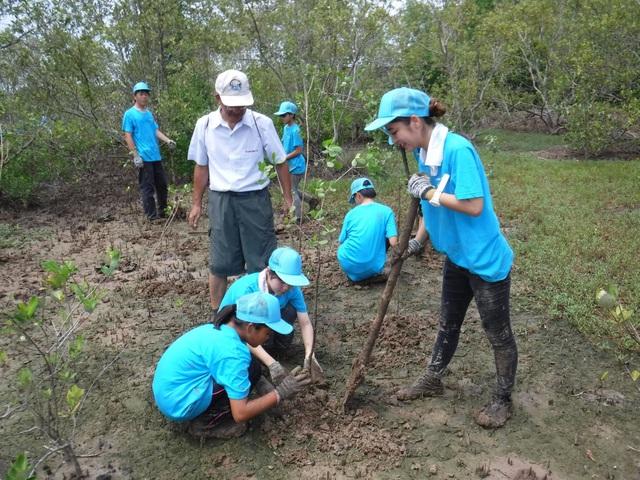 Đoàn học sinh, sinh viên khu vực Kyushu, Nhật Bản tham gia trồng rừng tại huyện Cần Giờ, thành phố Hồ Chí Minh.