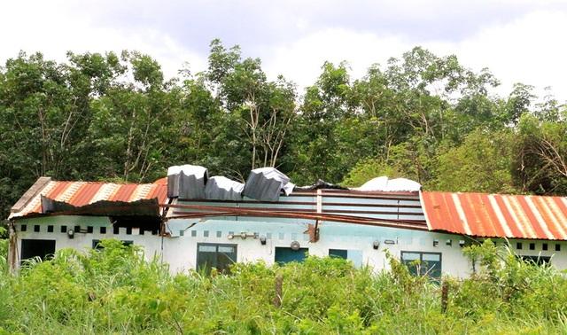 Khu nhà ở của công nhân xuống cấp, bị tốc mái.