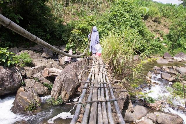 Không dám vượt qua cây cầu tre đang rung bần bật, cô giáo chọn cách đi dưới lòng suối ngập sâu đến gần bụng