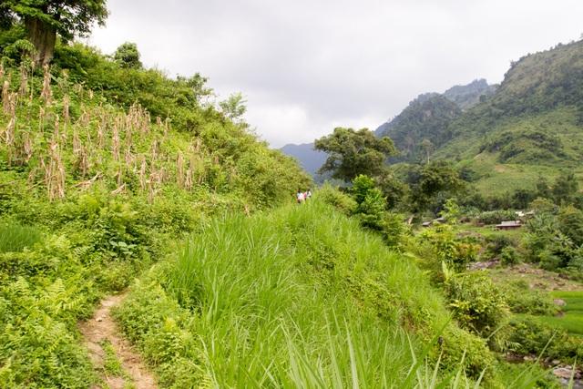 Một ngày theo chân cô giáo vùng cao trèo đèo, lội suối dạy học - 4