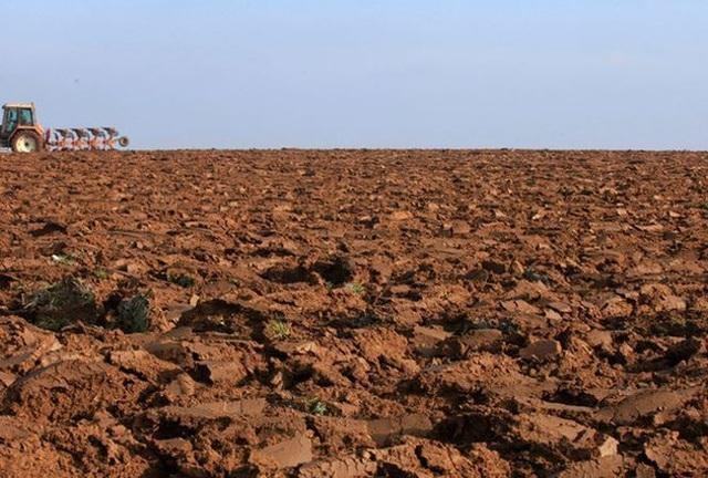 Nga mời chào Trung Quốc thuê đất nông nghiệp - 1
