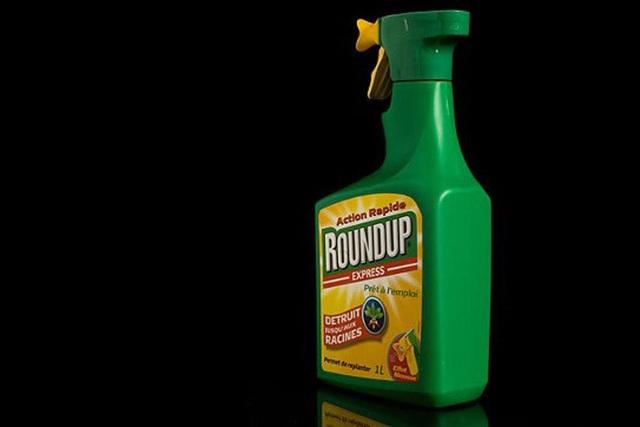 Thuốc diệt cỏ glyphosate gây ung thư đang sử dụng tràn lan ở Việt Nam - 1