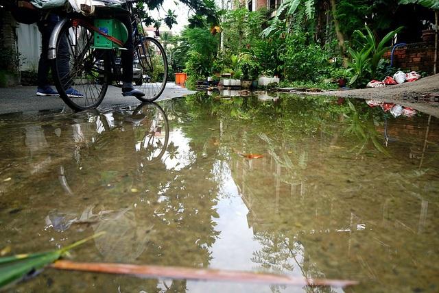 Nước đọng trước cửa các khu biệt thự bỏ hoang.