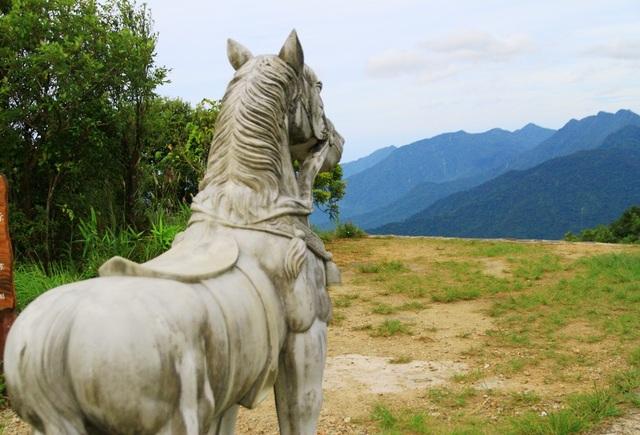 Ngựa trắng Bạch Mã đứng chầu nhìn về phía núi cao