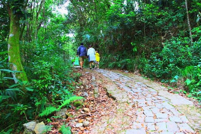Tuyến đường dẫn lên Vọng Hải Đài, nơi cao nhất Bạch Mã
