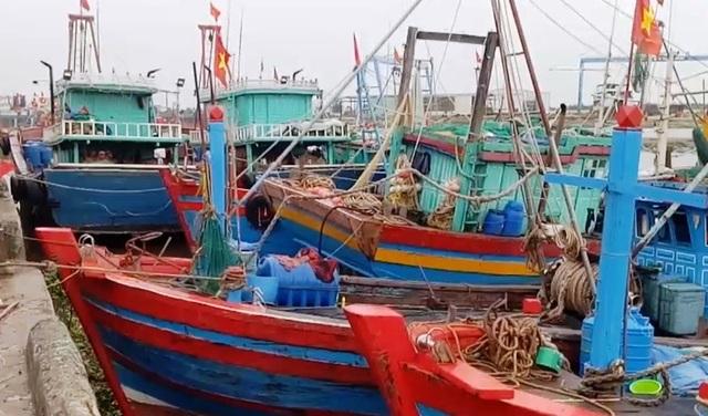 Các tàu thuyền vào bờ trú ẩn an toàn