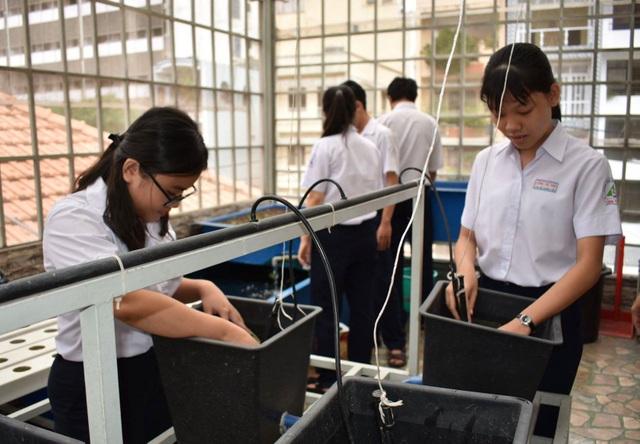 Học sinh ở TPHCM trong giờ thực hành ở vườn ươm