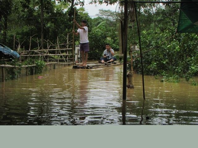 Nước lũ dâng cao tận nóc nhà, hàng nghìn hộ dân phải sơ tán - 11