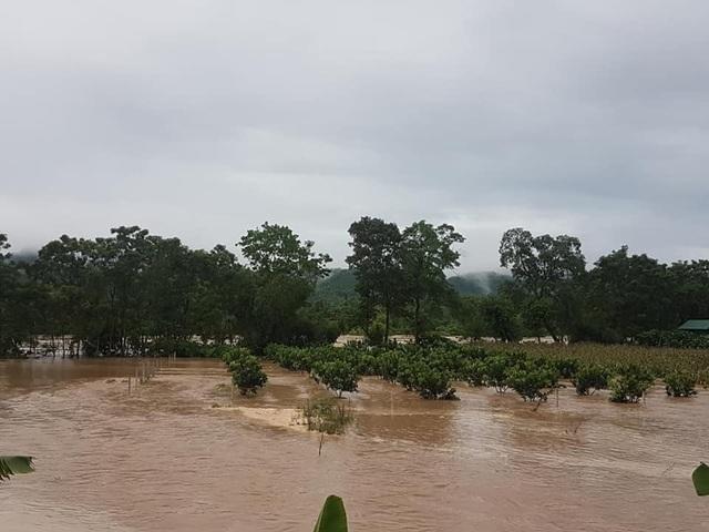 Nước lũ dâng cao tận nóc nhà, hàng nghìn hộ dân phải sơ tán - 13