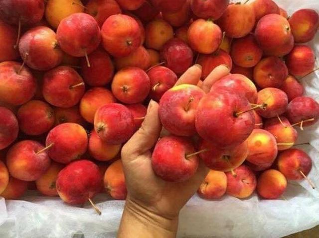 Trên thị trường, mùa táo cherry có từ tháng 9 đến khoảng tháng 11