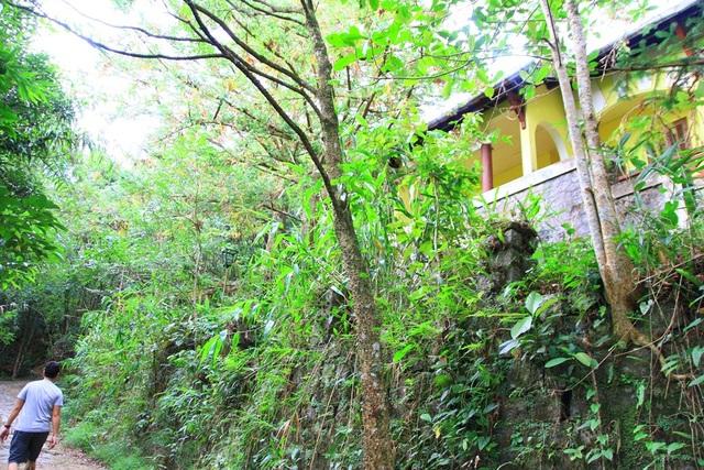 Đường dẫn lên Vọng Hải Đài có một số biệt thự bỏ hoang bên tay phải