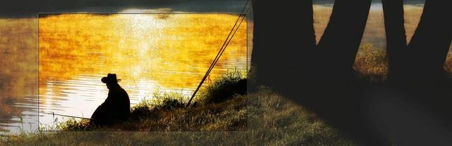 """LG """"thống trị"""" thị trường TV OLED toàn cầu - 3"""