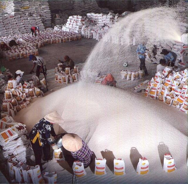 Thương nhân được quyền xuất khẩu gạo nếu thuê mướn được đủ cơ sở