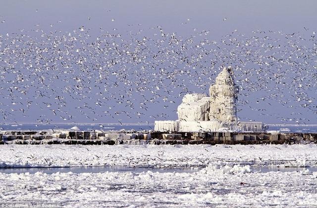 Những ngọn hải đăng độc lạ và ấn tượng nhất thế giới - 6
