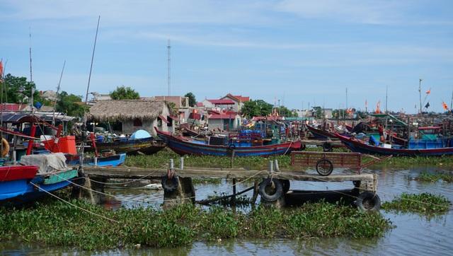 UBND xã Quảng Nham ngang nhiên cắt sông, chia lô cho dân thuê.