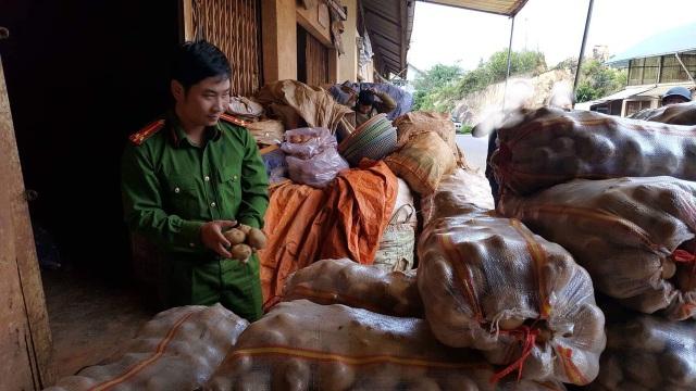 Lực lượng chức năng TP Đà Lạt vừa phát hiện thêm 1 vụ trộn đất đỏ vào khoai tây Trung Quốc với số lượng lớn.
