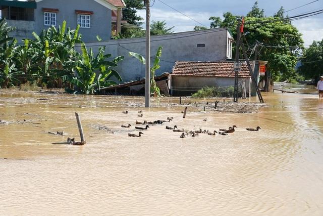 Nhiều vùng ở Nghệ An vẫn mênh mông nước lũ - 9
