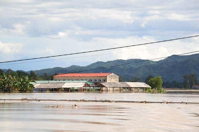 Trung tâm chợ Đàng của xã Thanh Xuân ngập trong biển nước.