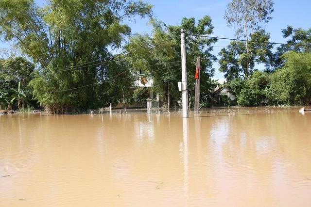 Nhiều vùng ở Nghệ An vẫn mênh mông nước lũ - 17