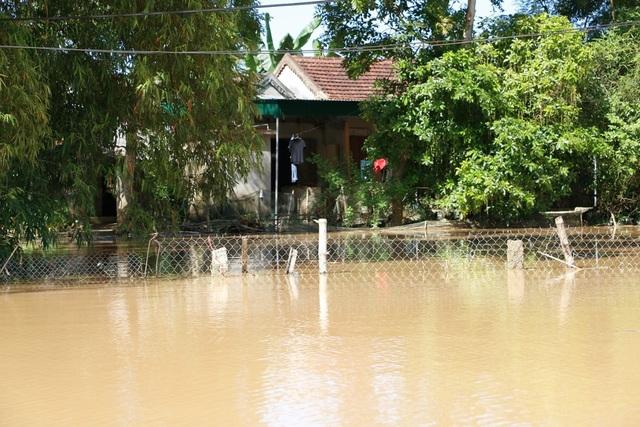 Nhiều vùng ở Nghệ An vẫn mênh mông nước lũ - 18